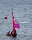 trearddur sailing клуба залива стоковое фото rf