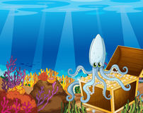 A treasure box under the sea with an octopus Stock Images