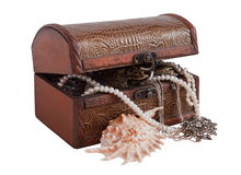 Treasure chest. With sea shell Royalty Free Stock Photography
