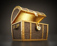 Treasure chest full of treasures Stock Images