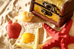 Treasure chest with seashells on sand Royalty Free Stock Image