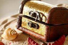 Treasure chest with seashells on sand Royalty Free Stock Images