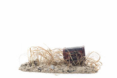 Treasure Chest on the soil with dry grass,white background. Royalty Free Stock Photos