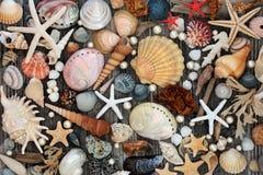 Treasure Of The Sea Abstract Royalty Free Stock Photos
