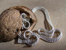 Treasure in walnut Stock Images