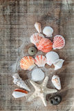 Treasures from the sea Stock Photos