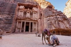 Treasury ancient architecture with camels in valley in Petra, Jordan stock photography