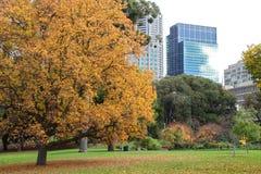 Treasury gardens, melbourne Stock Photography