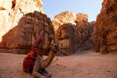 The Treasury, Petra Stock Image