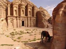 THE TREASURY - PETRA IN JORDAN. Petra in Jordan - the treasury Royalty Free Stock Photos