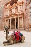 The Treasury at Petra, Jordan Royalty Free Stock Image