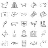 Treat the animal icons set, outline style. Treat the animal icons set. Outline set of 25 treat the animal vector icons for web isolated on white background Royalty Free Stock Photos