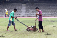 Treating grass. Workers were treating the grass football field in the city of Solo, Central Java, Indonesia royalty free stock photos
