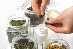Treatment with herbs Royalty Free Stock Image