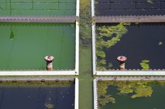 Treatment Plant. Part of sewage treatment plant filled with dirty, clean and green Water Royalty Free Stock Images