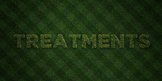 TREATMENTS - fresh Grass letters with flowers and dandelions - 3D rendered royalty free stock image Royalty Free Stock Photography