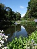 Trebah trädgårdar Royaltyfria Bilder
