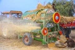 Trebbiatura del grano in un villaggio Immagini Stock Libere da Diritti