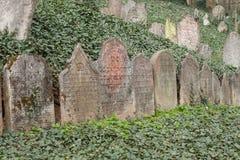 Trebic,捷克, 2016年4月23日:老犹太公墓,城市Trebic的老犹太部分在联合国科教文组织中是列出的 免版税库存照片