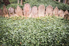 老犹太公墓在Trebic,捷克语 免版税库存图片