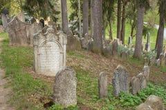 Trebic, República Checa, el 23 de abril de 2016: El cementerio judío viejo, la vieja parte judía de la ciudad Trebic es mencionad Fotografía de archivo libre de regalías