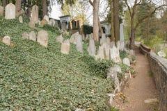 Trebic Tjeckien, April 23, 2016: Den gamla judiska kyrkogården, den gamla judiska delen av staden Trebic listas bland UNESCO arkivbilder