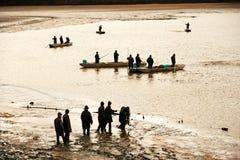 TREBON, RÉPUBLIQUE TCHÈQUE - décembre 2014 - pêchent la récolte Photographie stock libre de droits
