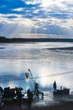 TREBON, TSCHECHISCHE REPUBLIK - Dezember 2014 - fischen Ernte Lizenzfreie Stockfotografie
