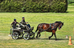 Trec Carriage. Nogent le Rotrou,France, 11.05.2013: Panning image of a speedy carriage during a trec competition organized during the Percheval Medieval Festival Royalty Free Stock Photos