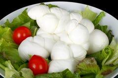 Treccia della mozzarella italiana fotografie stock libere da diritti