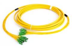 Treccia di fibra ottica E2 (LSH), patchcord fotografia stock