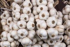 Treccia di un aglio casalingo organico fotografia stock