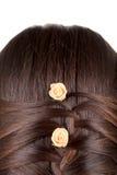 Treccia lunga dei capelli di Brown. fotografia stock libera da diritti