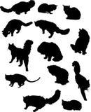 Trece siluetas del gato Fotos de archivo libres de regalías