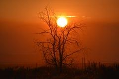 Trecento aree Smokey Sunset Dreamscape fotografie stock