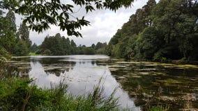 Trededar-Park - Newport - Wales Lizenzfreie Stockfotografie
