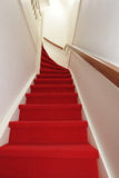 Treden met rood tapijt Royalty-vrije Stock Fotografie