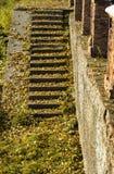 Treden met steenstappen met bladeren in de herfst royalty-vrije stock foto's