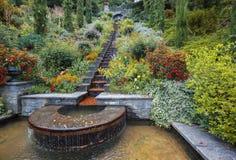Treden van het bloem de decoratieve water in de recente zomerpark Stock Afbeeldingen