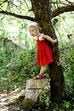 At the tree Royalty Free Stock Photos