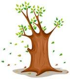 Tree. Illustration  of isolated a tree on white background Stock Photo