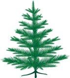 Tree. Christmas tree, silhouette on white background Royalty Free Stock Photos