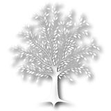 Tree Royalty Free Stock Photography
