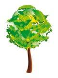 Tree. Stylized deciduous tree – vector illustration Stock Photo