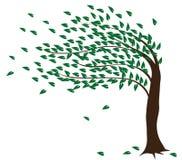 tree Royaltyfria Bilder