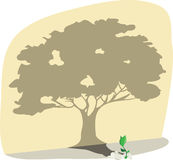 Tree. Illustration of a growing sprout and its tree shape shadow vector illustration