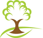 Tree. Llustration drawing of green tree logo Royalty Free Stock Photo