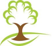 Tree Royalty Free Stock Photo
