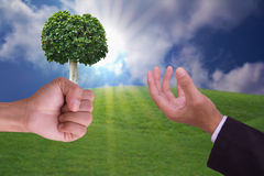 Tree. On business hand concept for conservation Stock Photo
