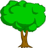 tree Στοκ φωτογραφία με δικαίωμα ελεύθερης χρήσης